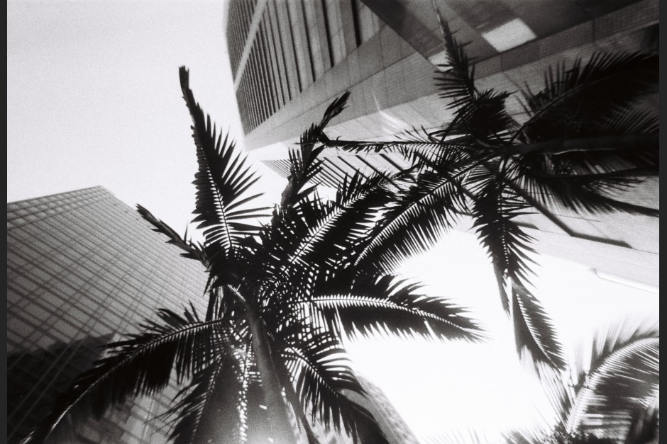 Lomography Simple Use Camera: Black White, Cat Ong