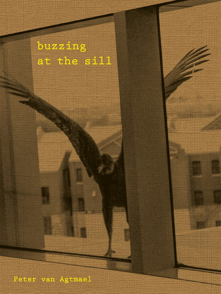 """Cover """"Buzzing at the Sill"""""""