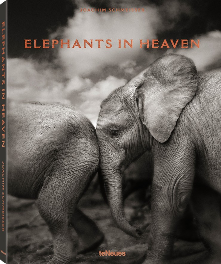 "Buchcover ""Elephants in Heaven"""