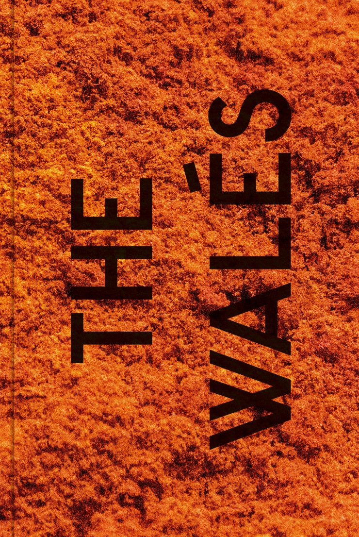 "Buchcover ""The Walés"""