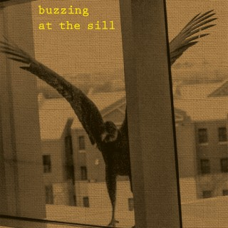 "Cover ""Buzzing at the Sill"""